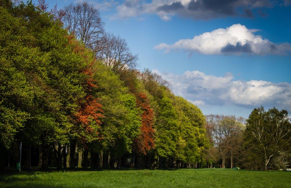 صور وخلفيات - منظر سماء