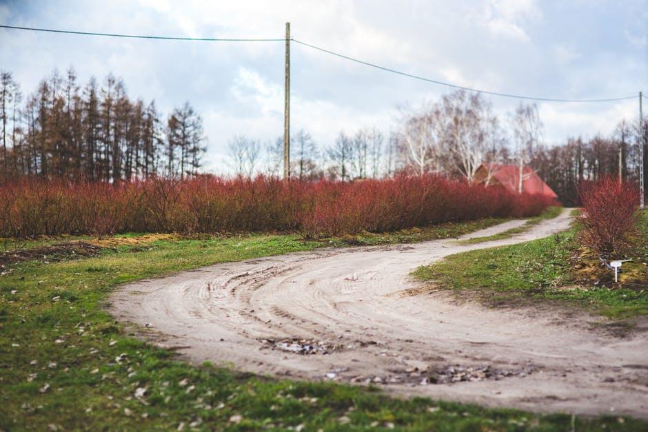 صورة طريق منحني
